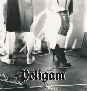 """Poligam - Poligam 2x12"""" LP - WB001"""